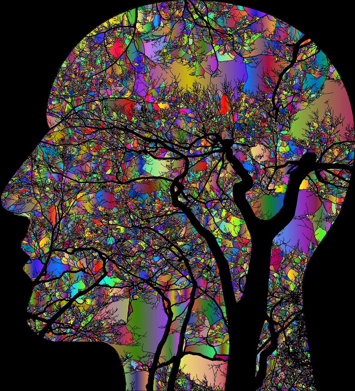 Les oméga 3, pourquoi sont-ils aussi importants pour le cerveau ?