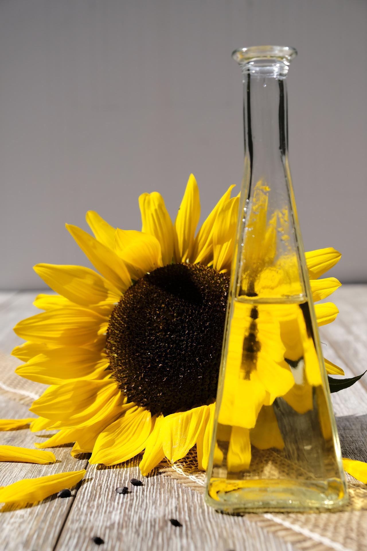 A quoi sert la vitamine E  dans les cosmétiques ?