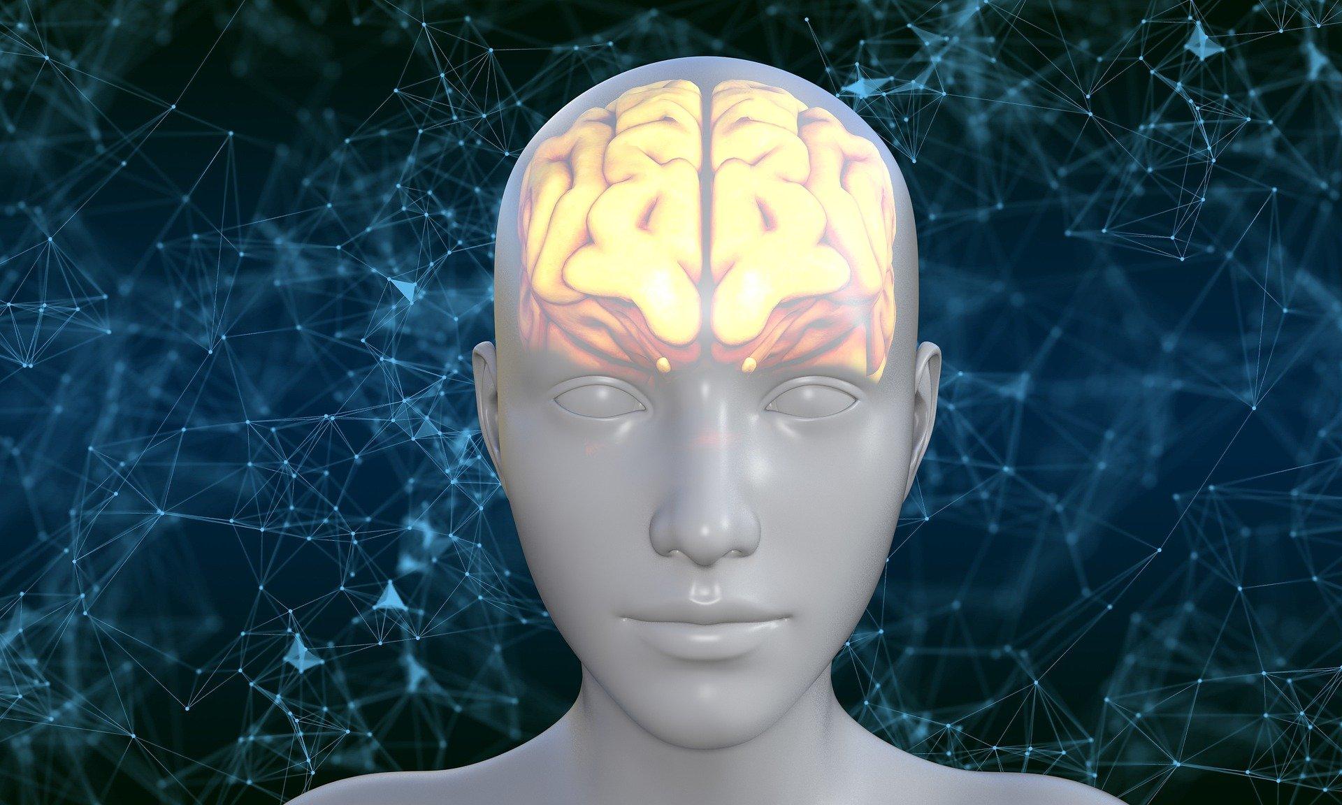 Oméga 3, votre cerveau en a besoin !