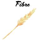 Forever forever-fiber Réf. 464