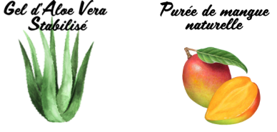 Aloe Berry Nectar Réf. 734